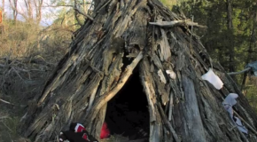 Wilderness Survival Shelters: Stay Alive – and Maybe Comfortable!